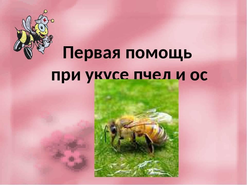 Средства защиты от комаров, мошки, пчел, ос, мух, слепней - сибирский медицинский портал