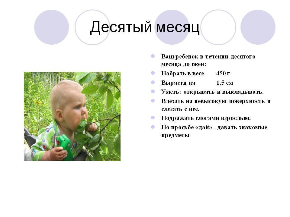 Что должен уметь ребенок в 11 месяцев: как развивать мальчика и девочку