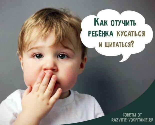 Ребенок грызет ногти, тянет в рот все подряд, ломает игрушки. как отучить малыша вредничать – новости барановичей, бреста, беларуси, мира. intex-press