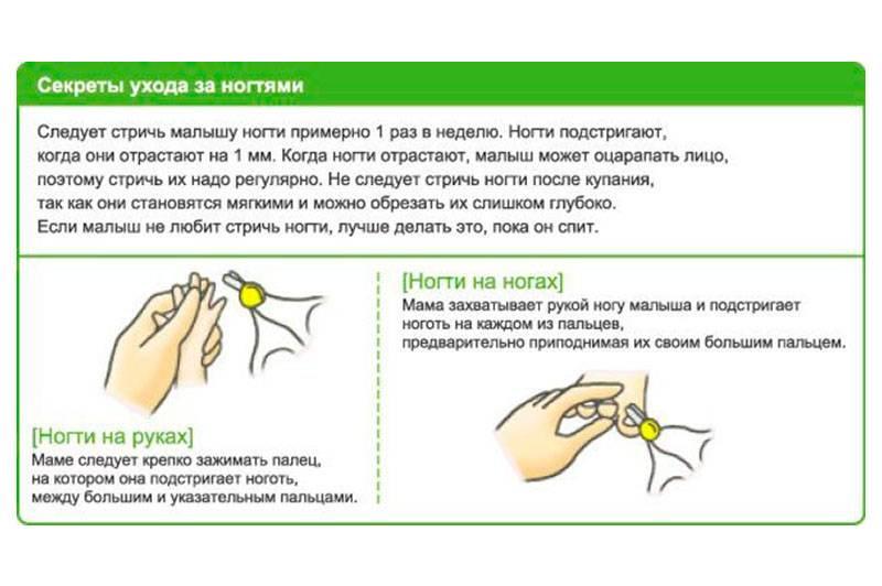 Обрезание ногтей новорожденного в первый раз: как правильно и когда стричь младенцу