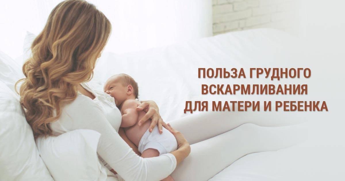 Самые распространенные мифы о грудном вскармливании   | материнство - беременность, роды, питание, воспитание