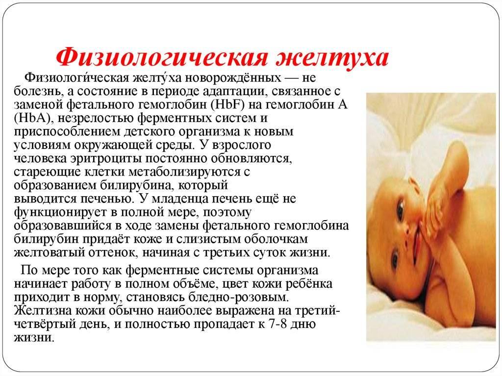 Желтуха. признаки, диагностика и лечение желтухи!