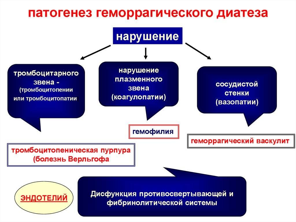Глава 56. геморрагические состояния