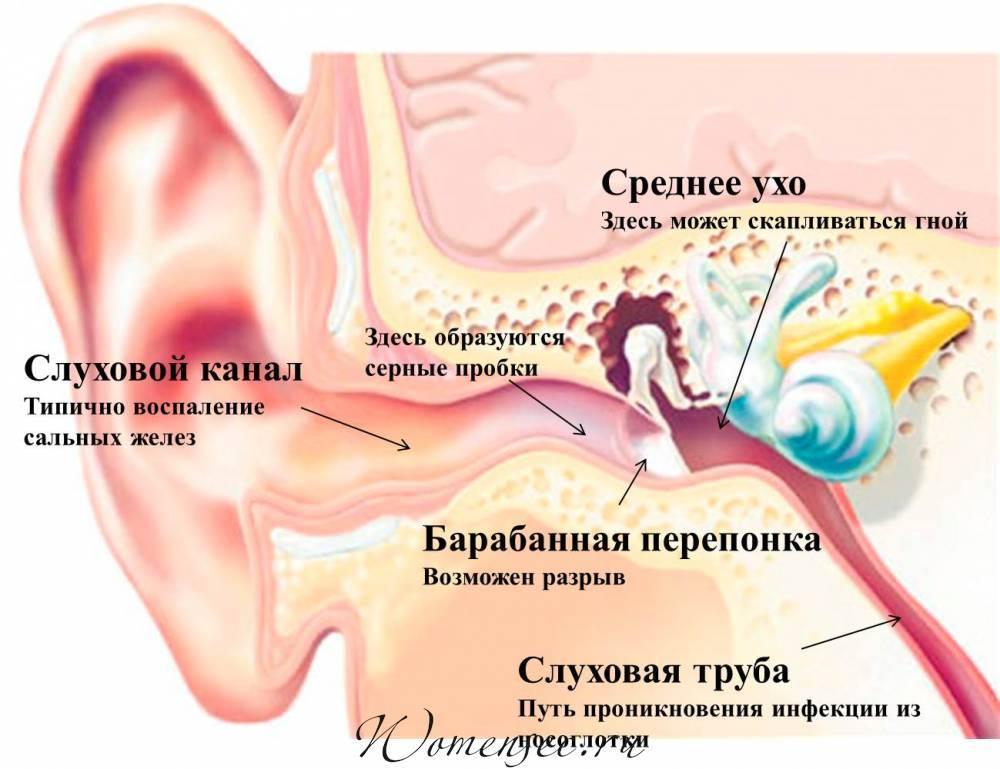 Болит горло и пропал голос, что делать и как лечить