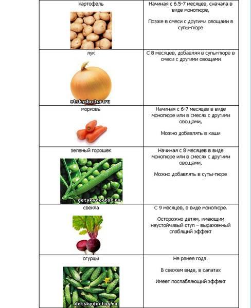 Диета при эрозии желудка   меню и рецепты диеты при эрозии желудка   компетентно о здоровье на ilive