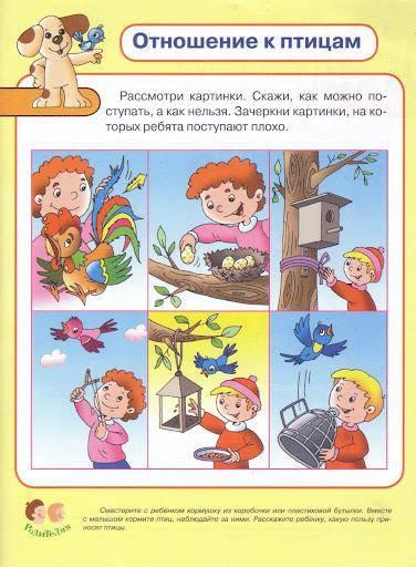 Границы и запреты в жизни ребенка: 9 принципов - заботливая альфа