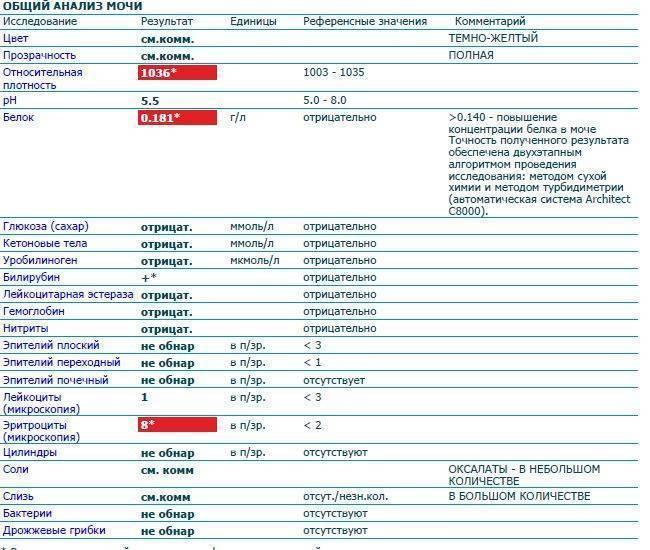 Инфекции мочевыводящих путей: признаки, диагностика, лечение, профилактика - medical insider