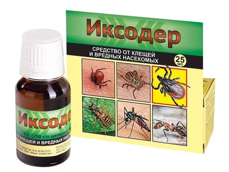 Профилактика заболеваний и инфекций передающихся иксодовыми клещами