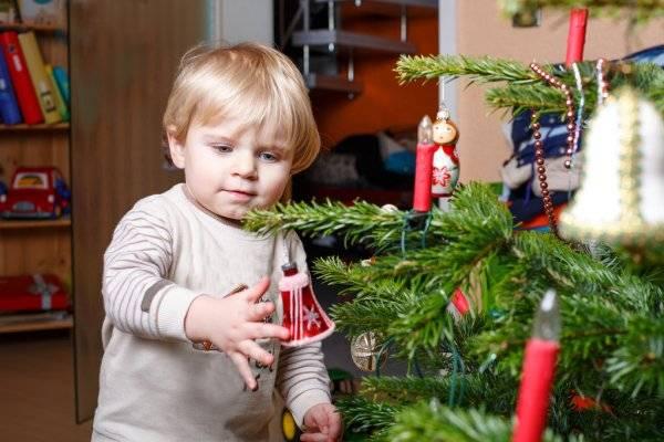 Можно ли в доме держать елку, согласно народным приметам