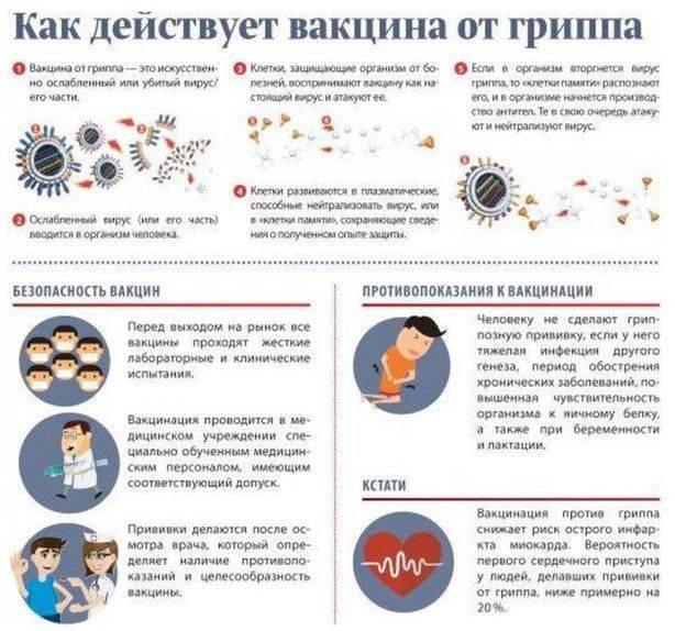 Как подготовиться к вакцинации от covid-19: памятка иммунолога