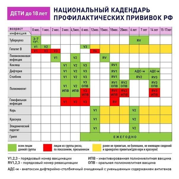 Национальный календарь прививок ? на 2020 год: график по возрастам