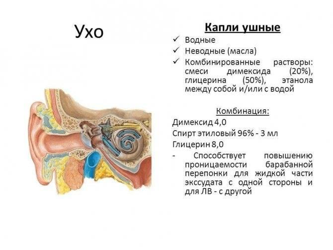 Тубоотит — воспалительное поражение среднего уха и слуховой трубы