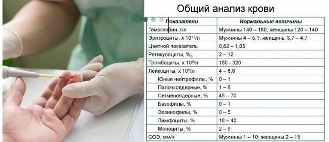 """Группа компаний """"виварий"""""""