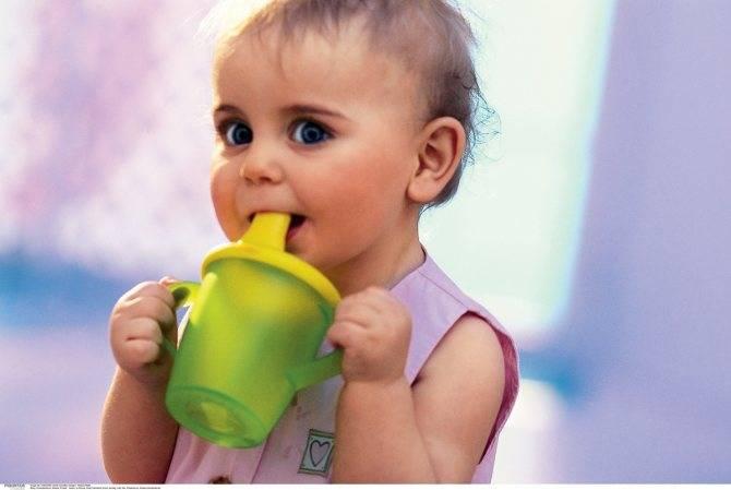 Как научить грудничка самостоятельно пить из чашки? советы психологов