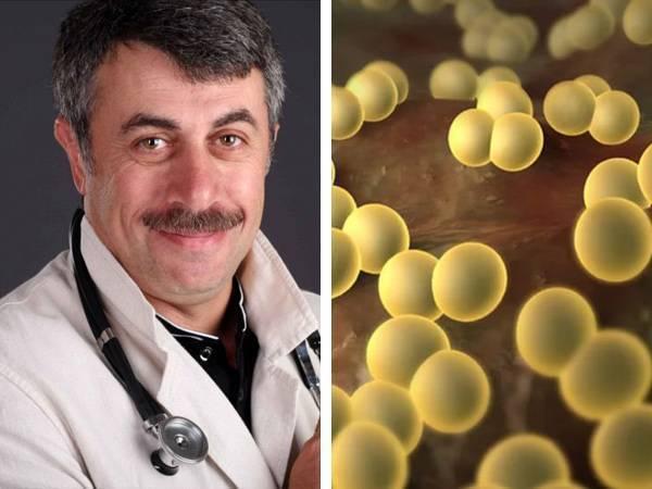 Стафилококк в горле: болезни и их лечение