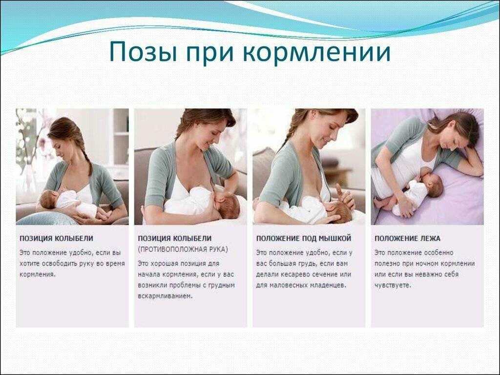 После родов: как наладить кормление грудью и уход за новорожденным