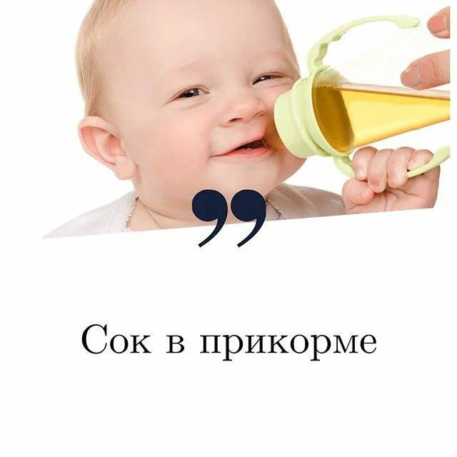 Прикорм