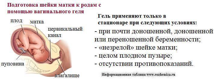 Эксцизия шейки матки, цена в москве - сделать эксцизию шейки матки в нии эпидемологии