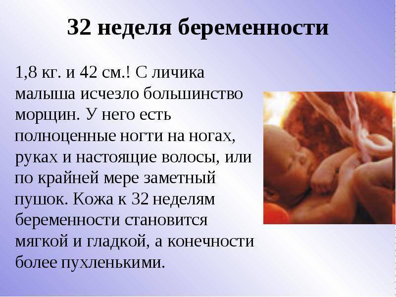 32 неделя беременности: рост, вес, развитие плода, узи