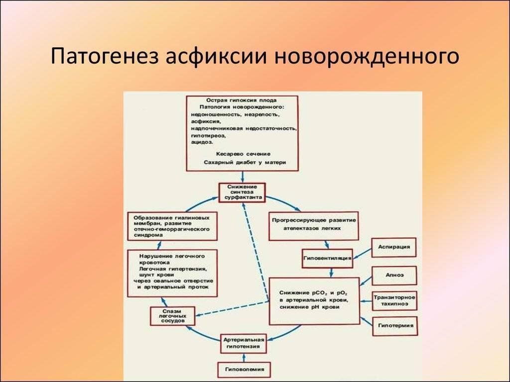 Глава 32. патология плода и новорожденного