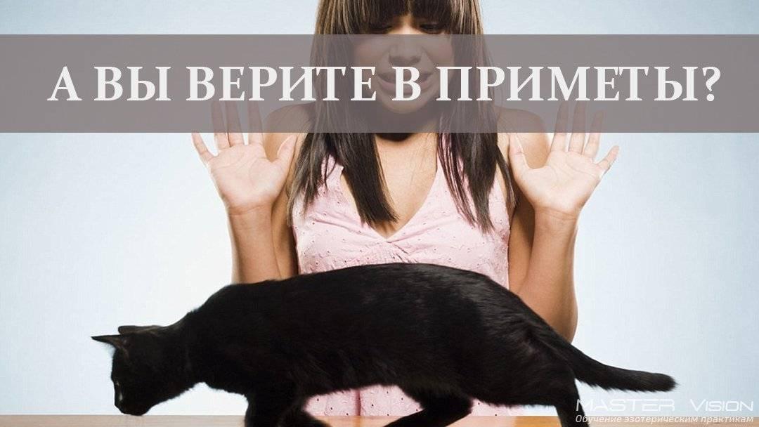 Суеверия – почему нельзя им верить | megapoisk.com