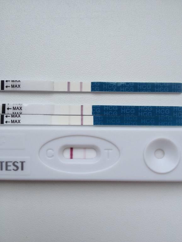 После переноса эмбрионов: когда он должен прижиться в матке