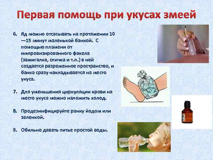 Аллергия на насекомых - симптомы, причины, профилактика и лечение