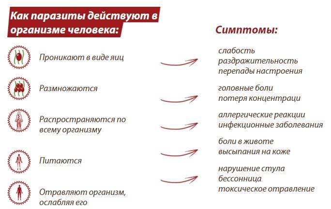 Глисты (гельминты) - причины, диагностика и лечение