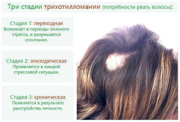 Трихология: лечение волос и кожи головы | семейный доктор