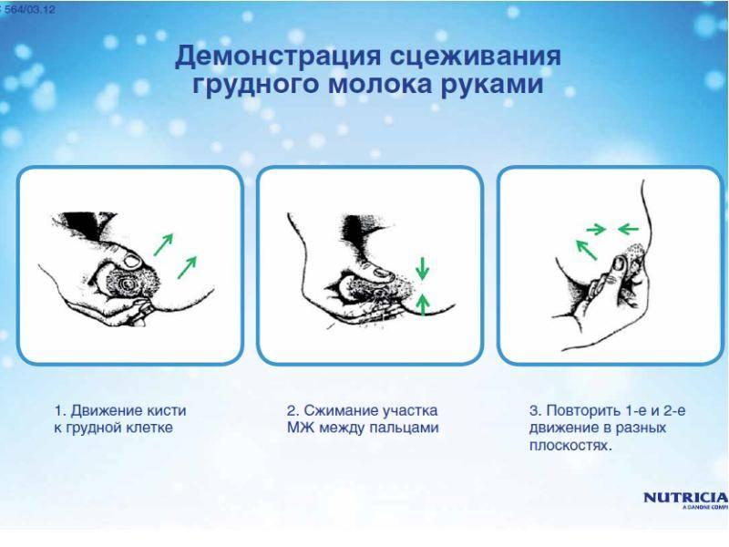 Как сцеживать грудное молоко руками, сцеживание в бутылочку вручную (техника)