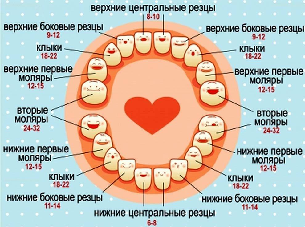 Симптомы при прорезывания зубов, возможные осложнения и их лечения