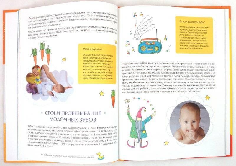 Что должен уметь ребенок в 2 года. подробное описание физического и эмоционального развития ребенка в 2 года.