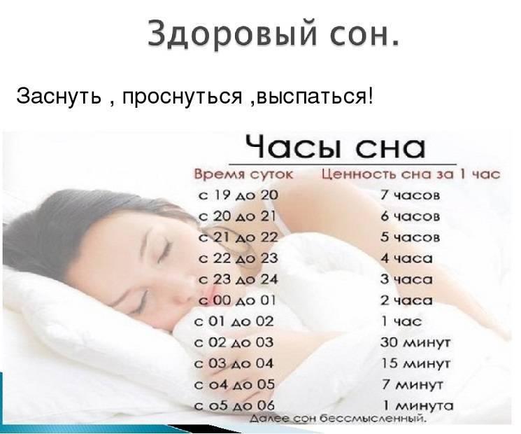 Полифазный сон: как спать меньше без ущерба для здоровья — блог викиум