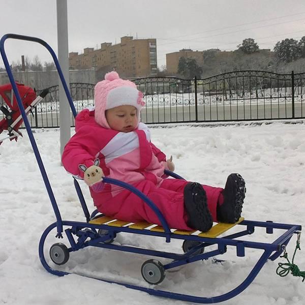 Как выбрать детские санки: какие бывают, лучшие модели на колесах для ребенка 1 года и детей 2 лет — товарика