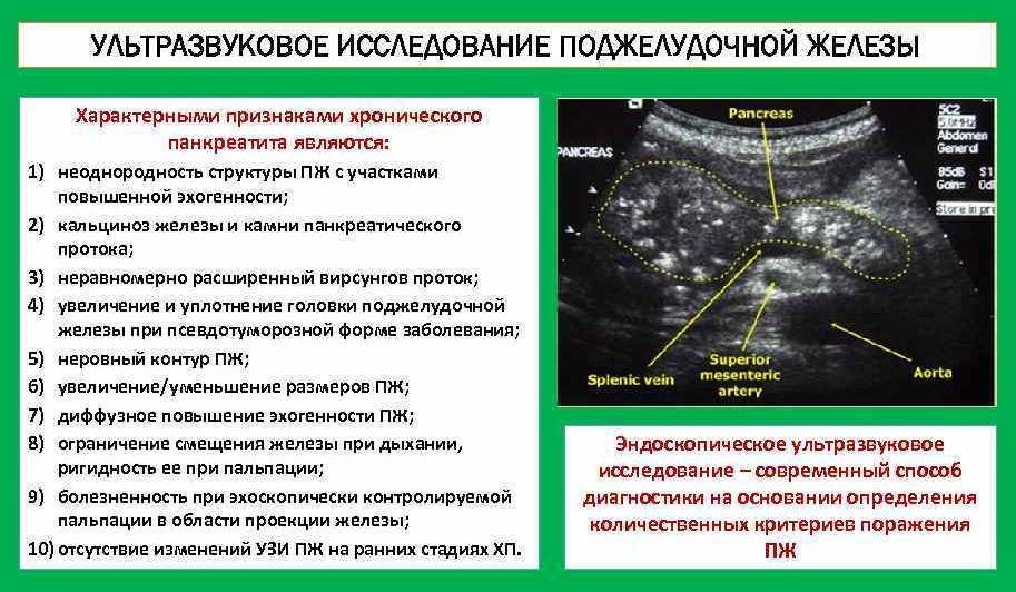 Узи брюшной полости: сделать в москве, цены и адреса клиник ао семейный доктор