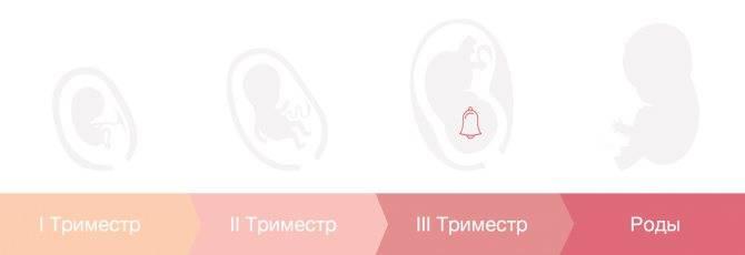 Восстановление  менструального цикла  после родов. ответы на вопросы - после родов