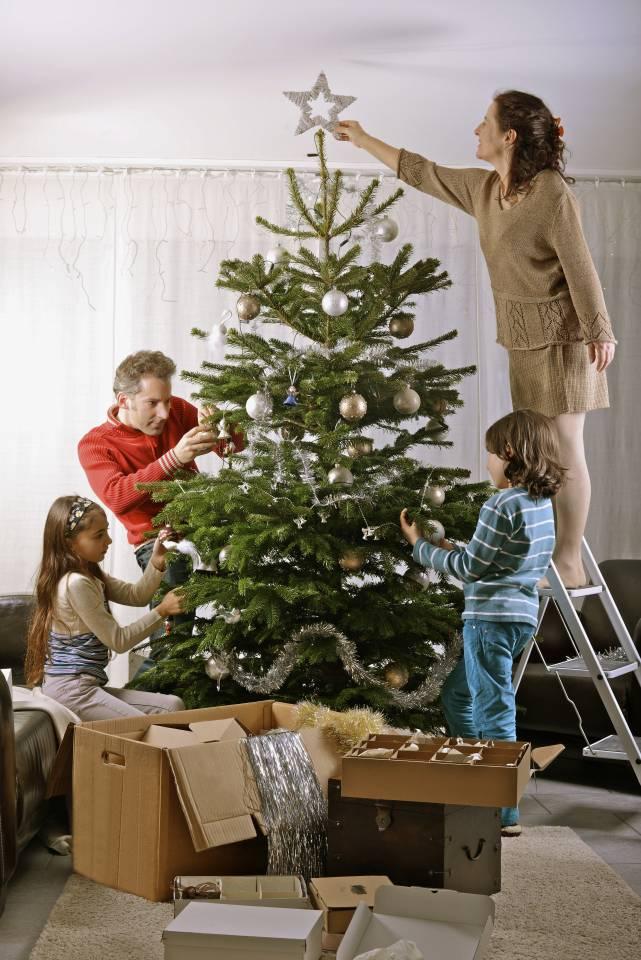 Куда ставить ёлку, если в доме годовалый ребенок?  - семья и дом - вопросы и ответы