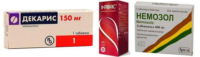 Энтеробиоз (острицы) - причины, симптомы, современная диагностика, лечение и профилактика :: polismed.com