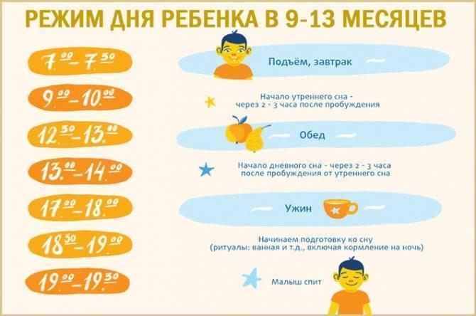 Режим дня ребенка 9-10 месяцев по часам при двухразовом дневном сне