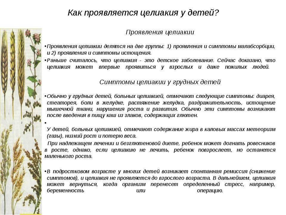 Целиакия (глютеновая энтеропатия) | компетентно о здоровье на ilive
