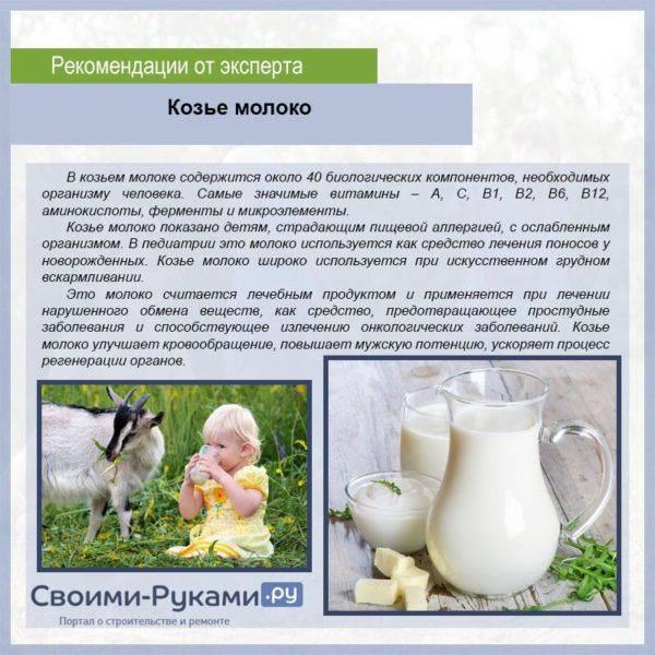 С какого возраста давать ребенку молоко, можно ли грудничкам