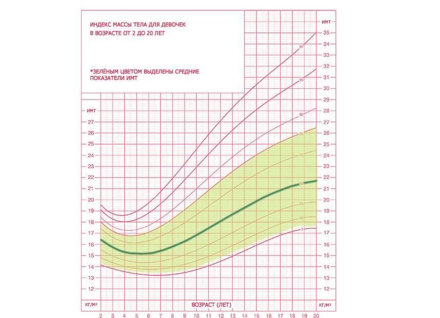 Рост и вес ребенка по годам: таблица до 14 лет для мальчиков и девочек