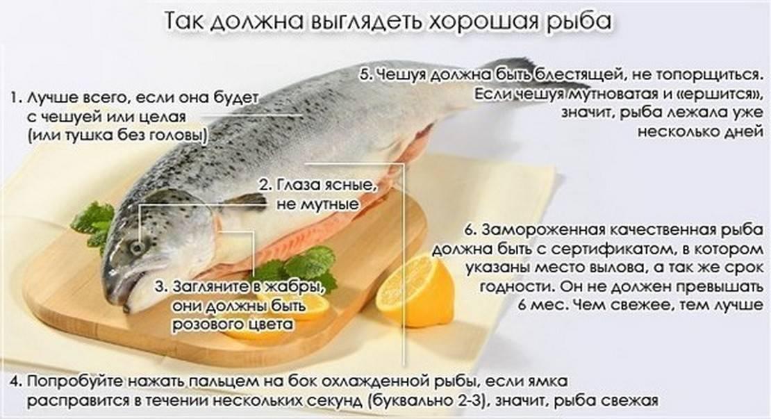 Как выбрать рыбу для меню кормящей мамы?
