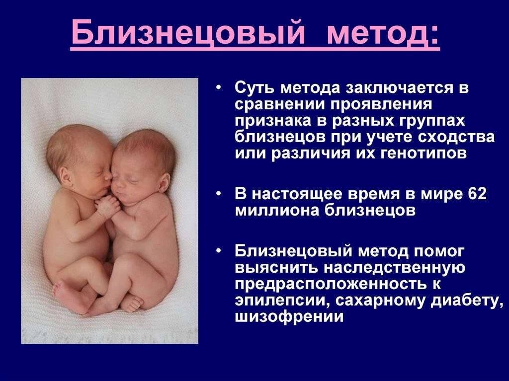 Большая разница — близнецы или двойняшки?