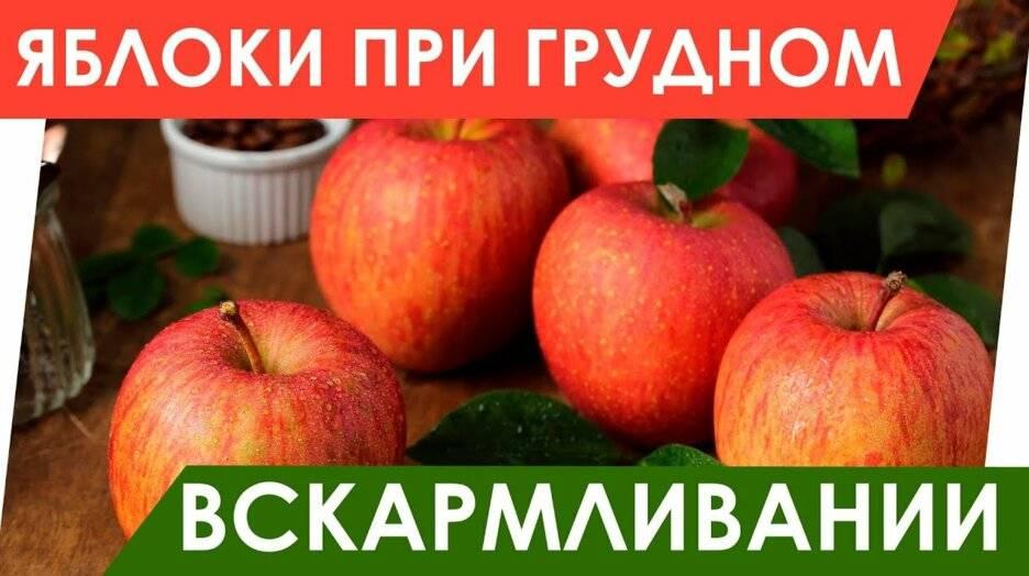 Яблоки при грудном кормлении – польза для мамы и ребенка