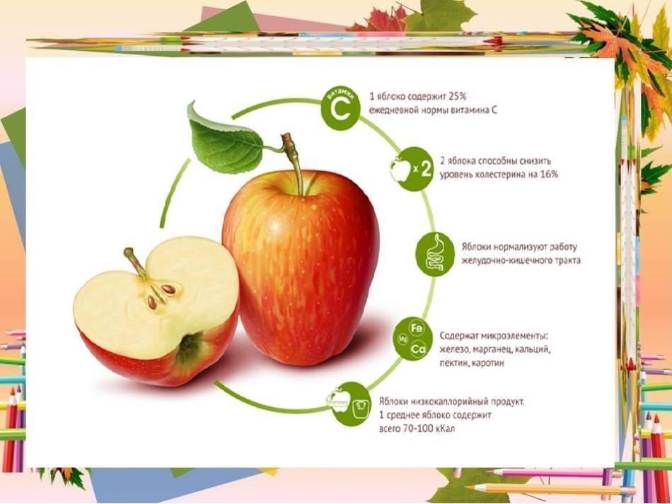 Зеленые яблоки при грудном вскармливании: можно ли их кушать кормящей маме уже в первый месяц, чем полезны при гв, как есть во время кормления новорожденного грудью?