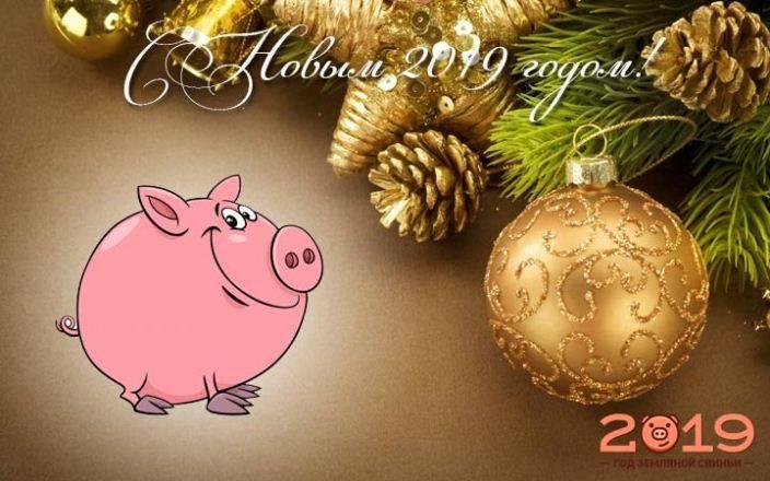 Что подарить ребёнку на новый год: 15+ идей подарка на 2020 год свиньи