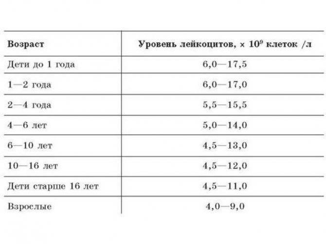 Копрограмма (общий анализ кала) - расшифровка, нормальные значения. как правильно подготовится и собрать материал?
