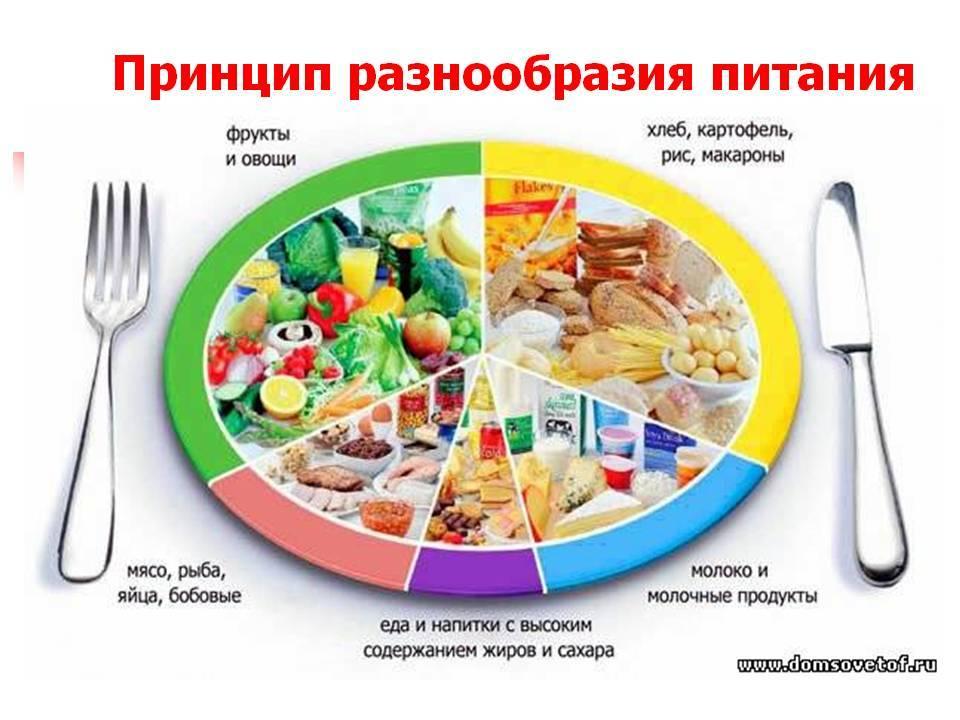 Читать книгу что можно, что нельзя кормящей маме. первое подробное меню для тех, кто на гв юлианны плискиной : онлайн чтение - страница 1