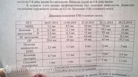 Нейросонография новорожденных - цены на услугу в москве.где сделать нейросонографию?